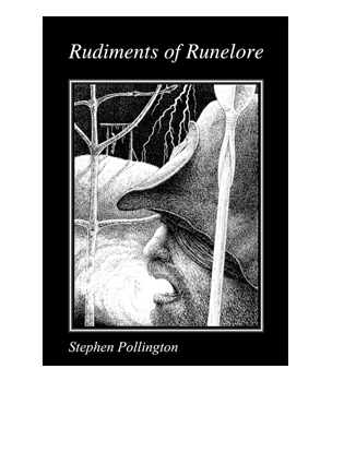 Book Cover for Rudiments of Runelore